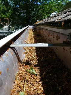 Tips For Cleaning And Maintaining Your Gutters
