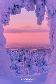 Window to Wilderness