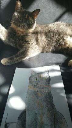We adopted this 14 year old girl a week ago. Here she is critiquing my brothers sketch of her.