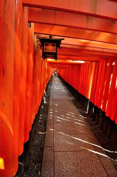Torii Gate - Fushimi Inari Shrine, Kyoto, Japan