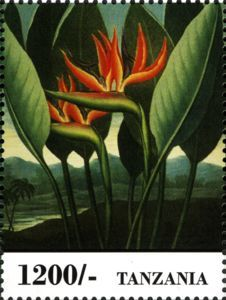 Sello: Flowers (Tanzania) (Fauna & Flora of Africa) Mi:TZ 4999,WAD:TZ020.13