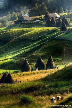 Landscape of Maramures, Romania by Constantin Hurghea Wonderful Places, Beautiful Places, Visit Romania, Romania Travel, Little Paris, Bucharest Romania, Voyage Europe, Beautiful Landscapes, Places To See