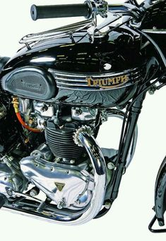 Vintage Motorcycles Blackbird T-Bird tank Triumph Motorbikes, Triumph Chopper, Triumph Cafe Racer, Triumph Bikes, Triumph Motorcycles, Triumph Bonneville, Cafe Racers, British Motorcycles, Cool Motorcycles