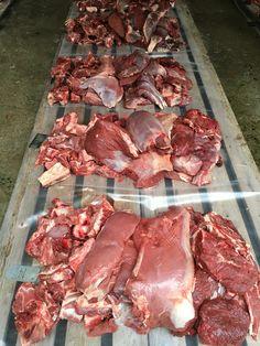 Lihaa