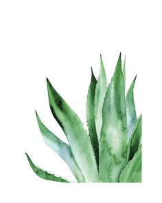 Green Palm Leaf Plants Wall Art Canvas Painting Posters And Prints Nordic Poster Picture Wall Pictures For Living Room Unframed - Wall Art Watercolor Plants, Watercolor Leaves, Plant Painting, Plant Art, Plant Illustration, Watercolor Illustration, Poster Pictures, Wall Pictures, Green Pictures