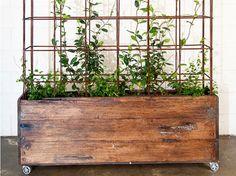 Billedresultat for plantekasse Room To Grow, Pergola, Planters, Home And Garden, Backyard, Decor, Portal, Google, Alice
