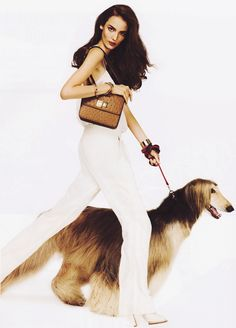 Zuzanna Bijoch/Vogue Paris March 2012 via Pet Fashion, Animal Fashion, Couture Fashion, Fashion Models, High Fashion, Fashion Design, Afghan Hound, Vogue Paris, Editorial Fashion