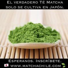 Ya te inscribiste en nuestra página para que te avisemos en cuanto llegue el nuevo embarque de Té Matcha?  Falta muy poco espéranos! Recuerda que el verdadero Matcha es Japonés  #matcha #tematcha #matchachile #japanese #saludable #matchalove