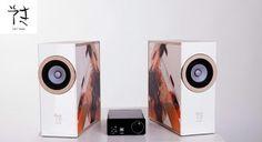Eryk S Concept loudspeaker + amp