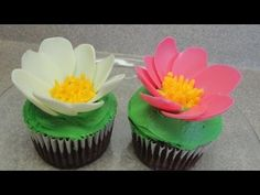"""The petal technique was found in the book """"cupcakes, cookies & pie, oh my!"""" by Richardson and Tack.  http://www.hellocupcakebook.com/     Buttercream frosting recipe and tutorial video:  http://www.youtube.com/watch?v=dfTR_cuOatQ    Candy melting wafers come in all sorts of different colours but all taste about the same, a bit like white chocolate (ex..."""