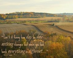 """Isn't it funny how day by day nothing changes but when you look back everything is different..."" -GCS. Lewis"
