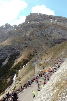 Giro d'Italia 2012 stage 20: Passo dello Stelvio
