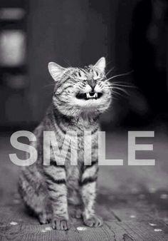 Hoy toca #sonreir asi que ponte tu mejor sonrisa! Todo es posible si tienes una #meta y te enseñamos como hacerlo. Infórmate ahora: www.yolandaypaul.com/carta