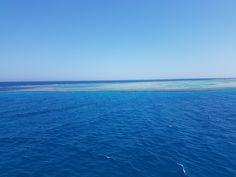 Не выдержал и решил выдать на общее обозрение эту красоту - коралловые рифы - наслаждайтесь!) 😉 #nofilter #redsea #трейдер#наморе