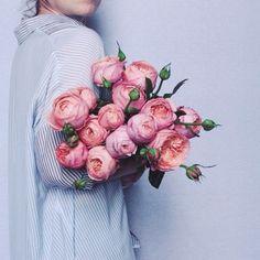 ♥ The Rose Garden ♥