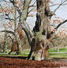 Ian Sidaway Studio: January Oil Painting Trees, Tree Watercolor Painting, Sand Painting, Watercolor Portraits, Watercolor Landscape, Artist Painting, Landscape Art, Landscape Paintings, Landscapes