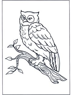 Uil Kleurplaten Printen.65 Beste Afbeeldingen Van Uil Kleurplaten Coloring Book Coloring