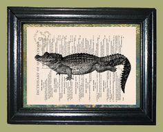 Everglades Alligator Art  Vintage Dictionary Page by CocoPuffsArt, $9.99
