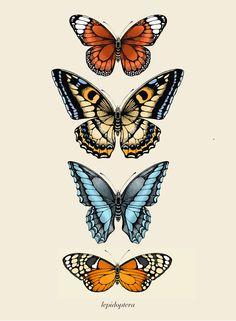 Butterfly Watercolor, Butterfly Wallpaper, Butterfly Art, Photo Wall Collage, Collage Art, Butterfly Illustration, Arte Sketchbook, Aesthetic Iphone Wallpaper, Art Plastique
