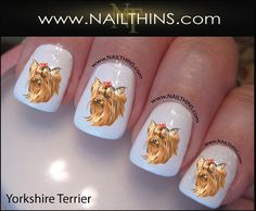 Hey, I found this really awesome Etsy listing at https://www.etsy.com/listing/125822835/yorkshire-terrier-nail-decal-dog-1