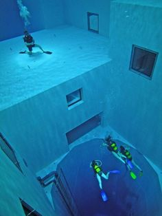 dive in the world's deepest dive pool located in Brussels, Belgium.  (113-ft deep)