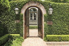 ivy covered facade