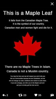 """JT we have a Canadian Identity and don't need you to dictate what it will be! It is not Islam! Canadian Things, I Am Canadian, Canadian Identity, Cognitive Dissonance, Political Quotes, Say That Again, My Kind Of Town, Canada Day, Truth Hurts"