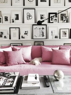 Monochrome gallery wall and decor, but with a colourful couch. What a playful idea. I'd probably switch the pink for red though.