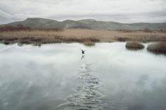 Petros Koublis - In Landscapes
