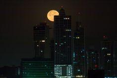 fotografiar la luna, luna llena