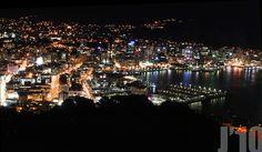 Wellington City, New Zealand Wellington City, New Zealand, Christmas Tree, Landscape, Holiday Decor, Night, Cities, Fotografia, Teal Christmas Tree