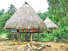 Embera live in villages of 5-20 homes on river banks