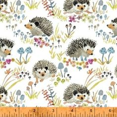 Betsy Olmsted - Enchanted Forest - Happy Hedgehogs in White