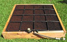 images about Raised Garden Kits on Pinterest