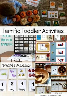 Terrific Toddler Activities- printables, counting, alphabet, animals and more