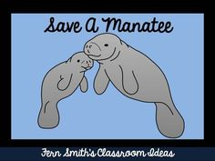 Tuesday Teacher Tips: Service Projects ~ Save a Manatee