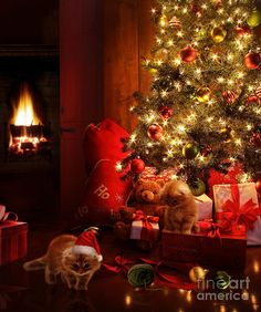 Buy Christmas scene with tree and fire in background by Sandralise on PhotoDune. Christmas scene with tree gifts and fire in background Christmas Clock, Christmas Tree With Gifts, Decorating With Christmas Lights, Christmas Quotes, Christmas Pictures, Christmas Themes, Christmas Holidays, Merry Christmas, Christmas Decorations