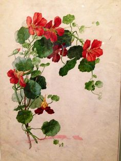 Nasturtium flowers- signify loyalty and abundance of blessings