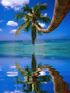 Beutiful Images of Beautiful Beaches -Beach with crystal clear water