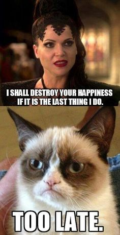 The Evil Queen has no power over Grumpy Cat.