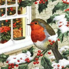 As a non-migratory species, robin redbreasts are found all the year round in the British Isles, although Highland robins will of. Christmas Bird, Christmas Scenes, Christmas Past, Christmas Pictures, Christmas Crafts, Charity Christmas Cards, Vintage Christmas Cards, Christmas Greeting Cards, Christmas Greetings