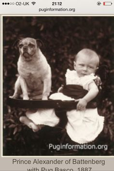 Alexander & his Pug 1887