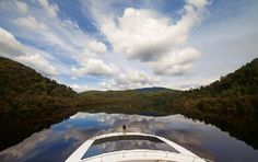 Gordon River Cruises: Gordon River reflections.  A great cruise, a different type of cruise compared to Bruny Island but still memorable.