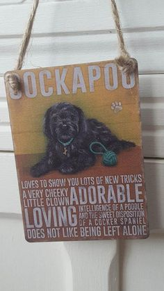 Black cockapoo dog mini metal chic n shabby vintage retro sign