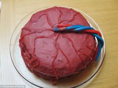 A red cake (pictured) decorated with strawberry shoe lace 'veins' appears to depict a placenta complete with an umbilical cord crafted from blue and red cable sweets