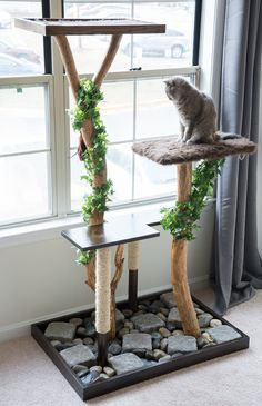 New Cat Tree Diy Towers Scratching Post Ideas Diy Cat Tower, Cat Tree Plans, Cat Climber, Diy Teepee, Cat Perch, Cat Stands, Cat Playground, Rock And Pebbles, Cat Condo