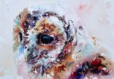 Tawny Owl ( watercolor ) - by Jake Winkle Owl Watercolor, Watercolor Animals, Watercolor Paintings, Watercolours, Owl Art, Bird Art, Spring Painting, Bird Pictures, Wildlife Art