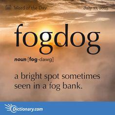 fogdog (noun - FOG-dawg) a bright spot sometimes seen in a fog bank. Unusual Words, Weird Words, Rare Words, Unique Words, Cool Words, Foreign Words, English Vocabulary Words, Learn English Words, English Grammar