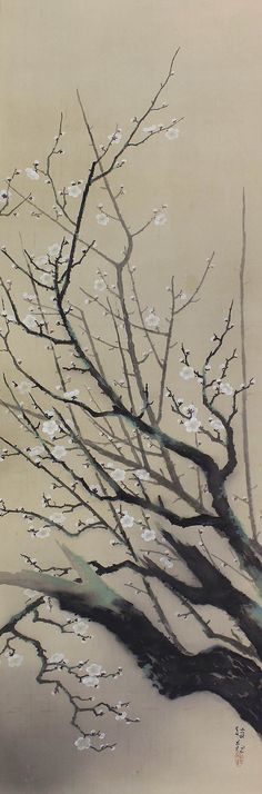White P lum Blossoms. Painted on silk with ink and pigments. Signed Shokan and sealed. Ochi Shokan (1882-1958) was a Japanese artist active during