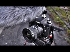 ▶ DSLR Tutorial: How to shoot a documentary & what gear to use! - YouTube